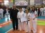 Międzynarodowe Mistrzostwa Austrii Karate Kyokushin 06.2010