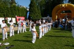 Piknik Rodzinny - Pokaz Karate 22.05.2009